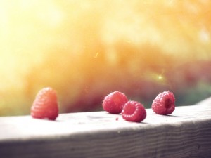 raspberries-336671_1920