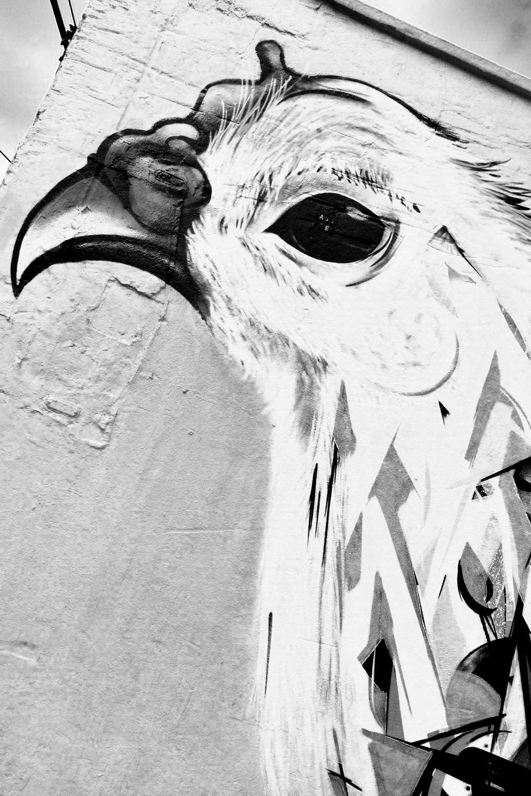 Big Bird: A Street Mural